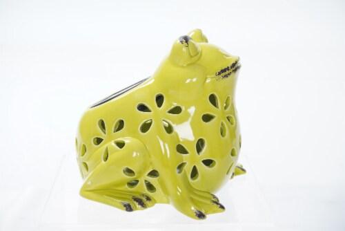 The Joy of Gardening Solar Ceramic Frog Perspective: left
