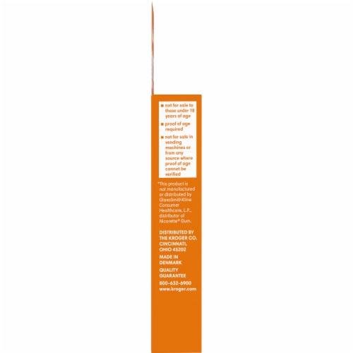 Kroger® Coated Fruit Wave Nicotine Gum 2mg Perspective: left