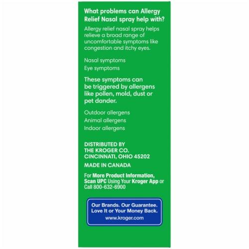 Kroger 24 Hour Allergy Relief Nasal Spray Perspective: left