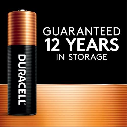 Duracell AA Alkaline Batteries Perspective: left