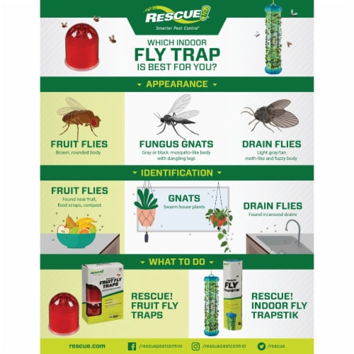 Rescue Reusable Fruit Fly Trap (2-Pack) FFTR2-BB4 Perspective: left