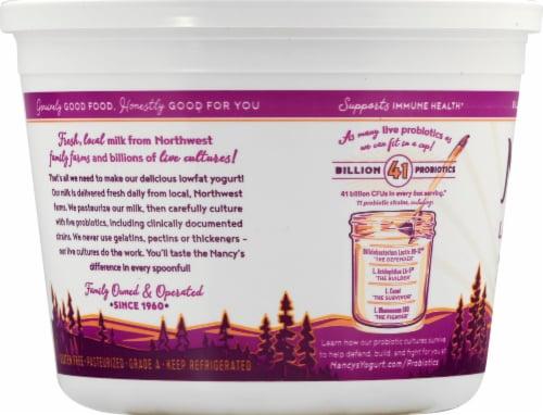 Nancy's Plain Lowfat Probiotic Yogurt Perspective: left