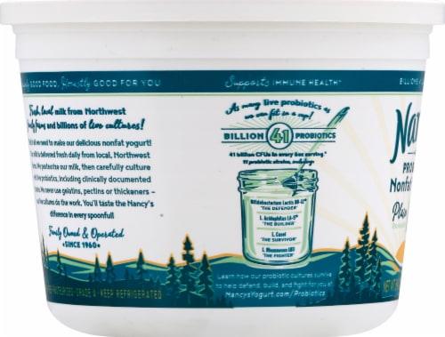 Nancy's Plain Probiotic Nonfat Yogurt Perspective: left