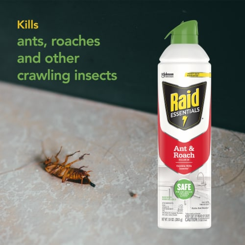 Raid® Essentials Ant and Roach Killer Aerosol Perspective: left
