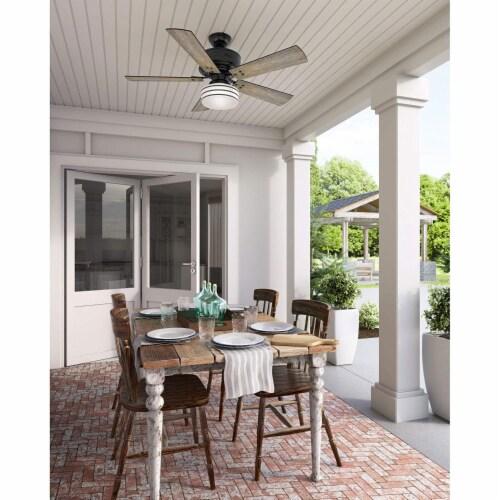 Hunter Fan Company Cedar Key 52  Indoor Outdoor Ceiling Fan with Light, Black Perspective: left
