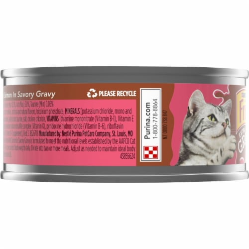 Friskies Extra Gravy with Salmon Chunky Wet Cat Food Perspective: left