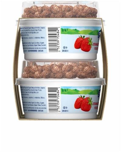 Stonyfield Organic Strawberry Yogurt and Choco Chips Low Fat Yogurt Perspective: left