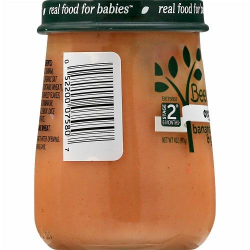 Beech-Nut Organics Banana Cinnamon & Granola Stage 2 Baby Food Perspective: left