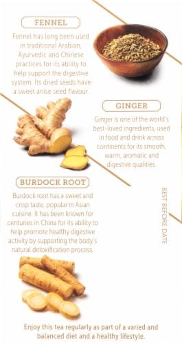 Twinings of London Renew Burdock Root Fennel Lemon & Ginger Tea Bags Perspective: left