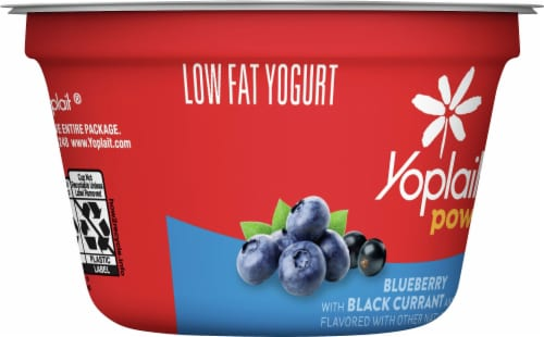 Yoplait® Power Blueberry with Black Currant and Chia Low Fat Yogurt Perspective: left