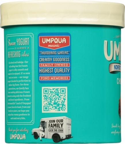 Umpqua Chocolate Nonfat Frozen Yogurt Perspective: left
