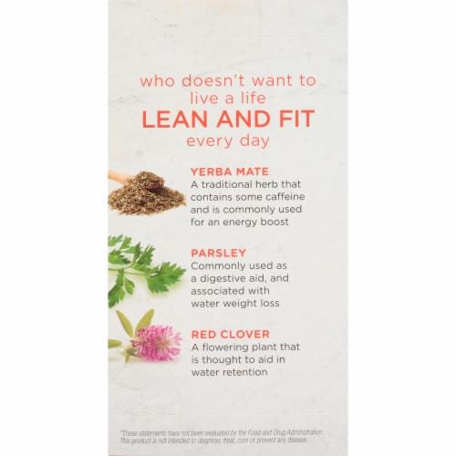Bigelow Benefits Lean and Fit Citrus & Oolong Tea Bags Perspective: left