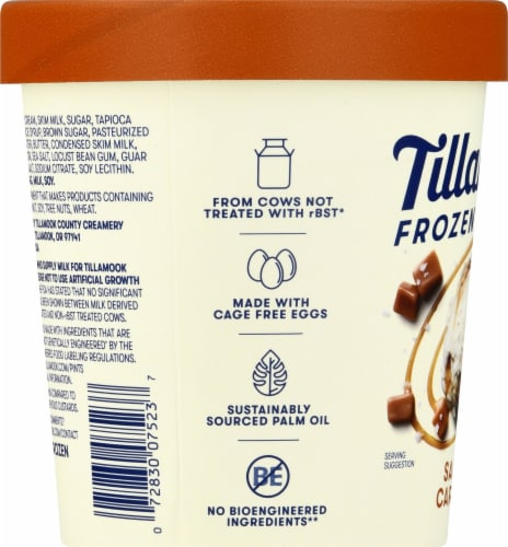 Tillamook Frozen Custard - Salted Caramel Perspective: left