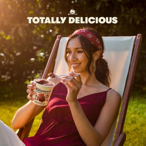 Tillamook Frozen Custard - Chocolate Brownie Perspective: left