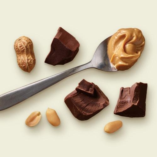 Tillamook Chocolate Peanut Butter Ice Cream Perspective: left