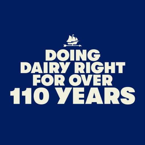 Tillamook Plain & Simple Greek Yogurt Perspective: left