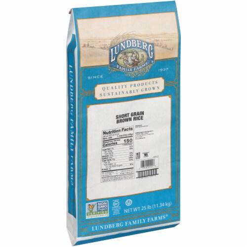Lundberg Family Farms Brown Short Grain Rice - Single Bulk Item - 25LB Perspective: left