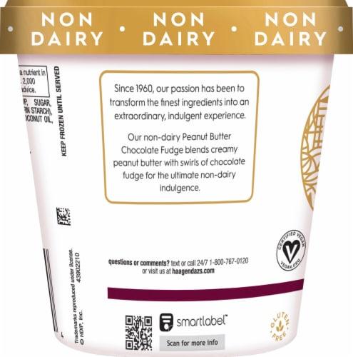 Haagen-Dazs Non-Dairy Peanut Butter Chocolate Fudge Frozen Dessert Perspective: left