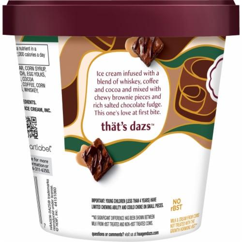 Haagen-Dazs Spirits Irish Cream Brownie Ice Cream Perspective: left