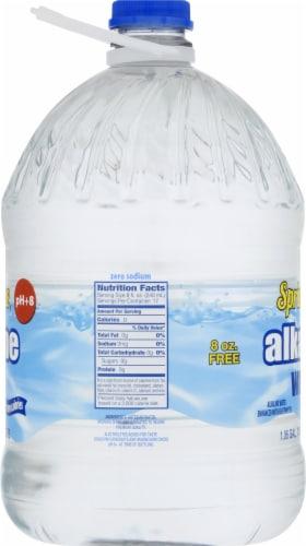 Springtime Alkaline Water Perspective: left