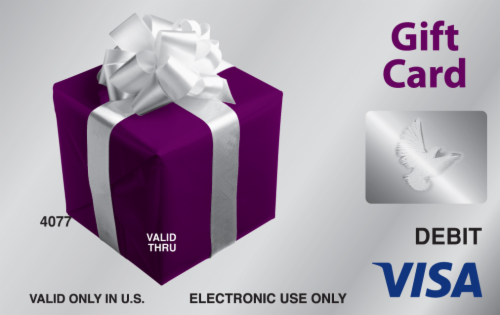Visa $20-$500 Gift Card ($5.95 activation fee) Perspective: left