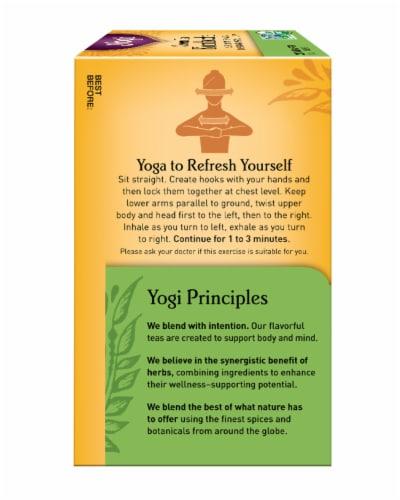 Yogi Kombucha Green Tea Bags Perspective: left