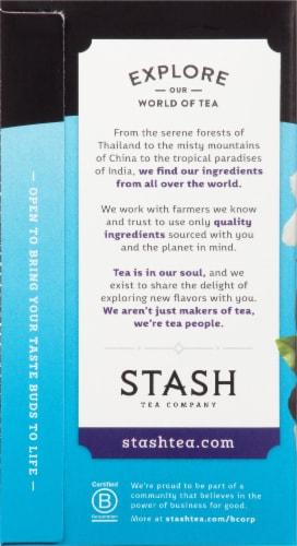 Stash Blueberry Superfruit Herbal Tea Bags Perspective: left