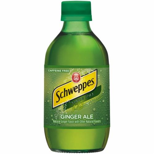 Schweppes Ginger Ale Soda Perspective: left