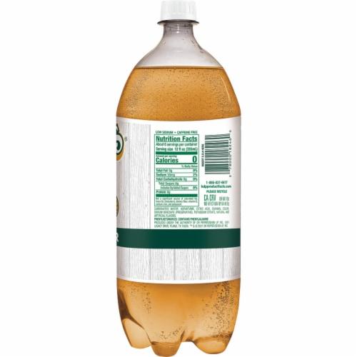 Vernors® Zero Sugar Ginger Soda Perspective: left