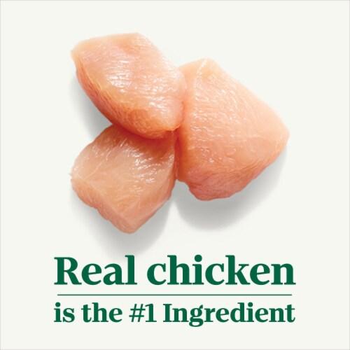 Nutro Grain Free Cuts in Gravy Chicken Sweet Potato & Pea Stew Wet Dog Food Perspective: left