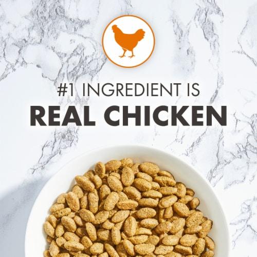 Nutro Wholesome Essentials Chicken & Brown Rice Recipe Dry Indoor Cat Food Perspective: left