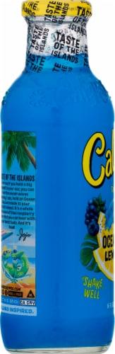 Calypso Ocean Blue Lemonade Perspective: left