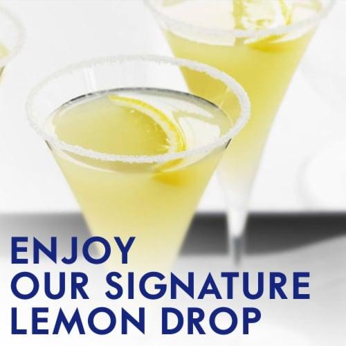 Grey Goose Le Citron Vodka Perspective: left