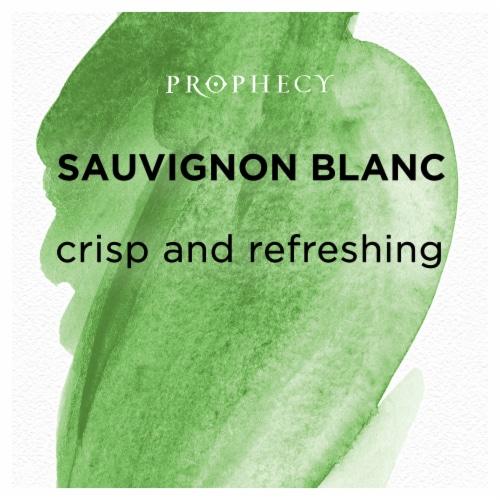 Prophecy Sauvignon Blanc White Wine Perspective: left