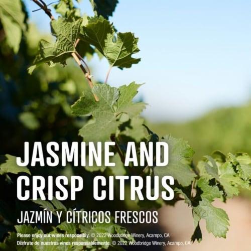 Woodbridge® by Robert Mondavi Riesling White Wine Perspective: left