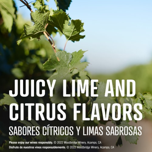 Woodbridge by Robert Mondavi Pinot Grigio Box Wine Perspective: left