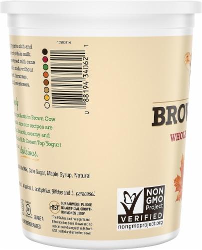 Brown Cow® Cream Top Maple Whole Milk Yogurt Perspective: left