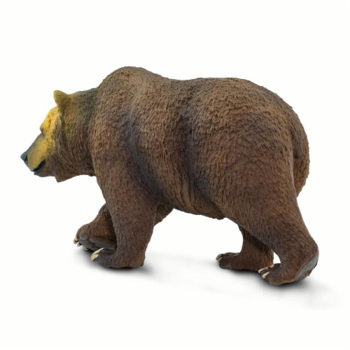 Grizzly Bear Perspective: left