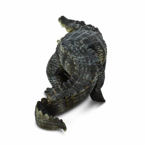 Saltwater Crocodile Perspective: left