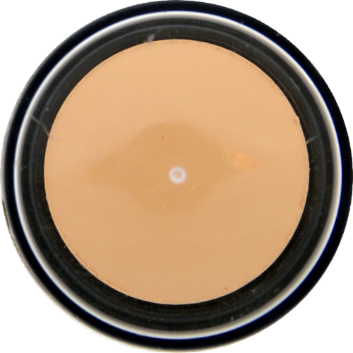 Revlon PhotoReady Insta Fix Vanilla Makeup Perspective: left