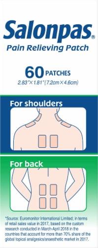 Salonpas Pain Relieving Patches Perspective: left