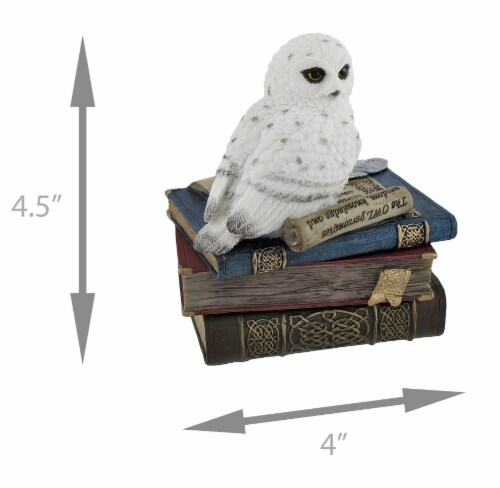 Wise Snow Owl Resting on Scholar`s Books Trinket Box Perspective: left