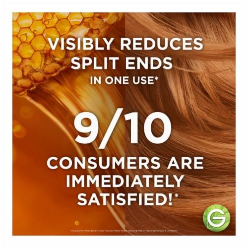 Garnier Whole Blends Honey Replenishing Shampoo Perspective: left