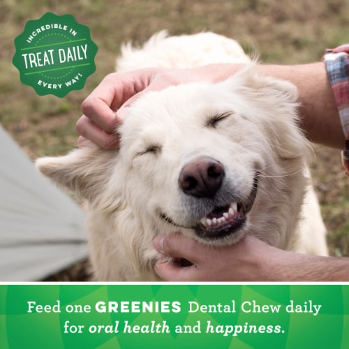 Greenies Original Regular Sized Dog Dental Treats Perspective: left