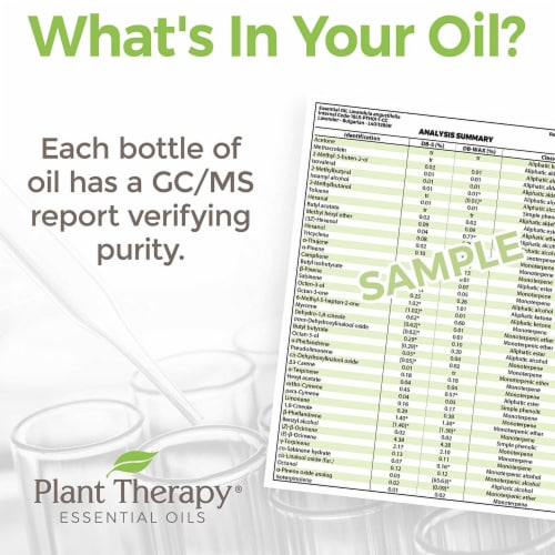 Plant Therapy 10 mL Essential Oil Roll On Blends Set, 1/3 Oz, KidSafe Top 3 Perspective: left