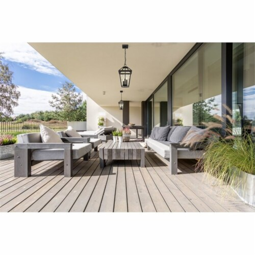 Z-Lite Talbot 3 Light 18  Clear Glass Stainless Steel Outdoor Pendant in Black Perspective: left