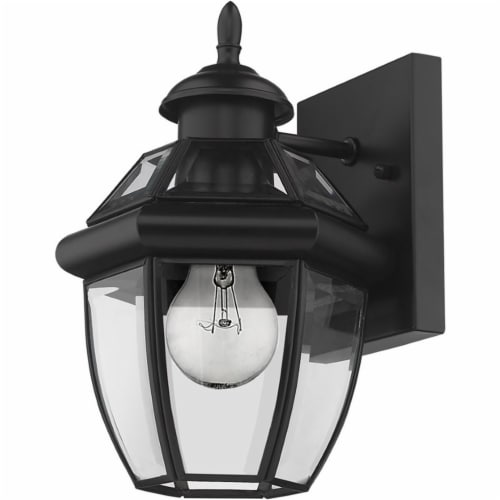 Z-Lite Westover 11  Clear Glass Brass Outdoor Wall Sconce in Black Perspective: left