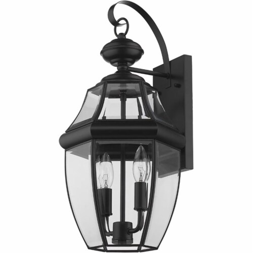 """Z-Lite Westover 2 Light 20"""""""" Clear Glass Brass Outdoor Wall Sconce in Black Perspective: left"""