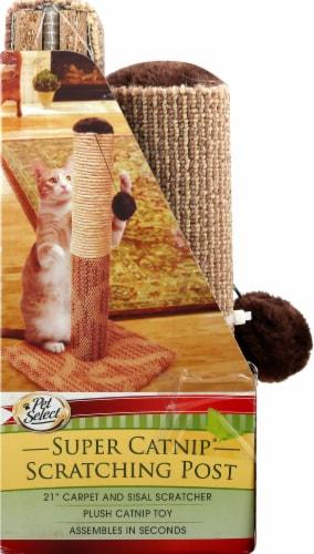 Pet Select Super Catnip Scratching Post Perspective: left