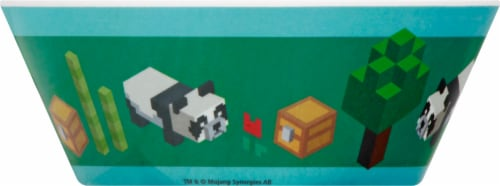 Zak Designs Minecraft Melamine Bowl Perspective: left